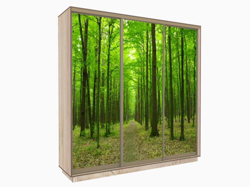 шкаф купе трехдверный с фотопечатью лес в прихожую